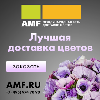 AMF2019